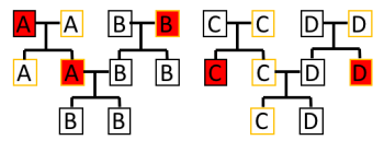 Figure 3: Sex chromosomes in a fictional population. The black outline indicates Y chromosome whereas the yellow indicates mitochondrial DNA. Red squares indicate extinct lineages at this particular point (Authors own).