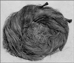 Figure 1: The auburn hair and jet cantharus-headed pins of the Railway Station burial (Allason-Jones 2006, 156)