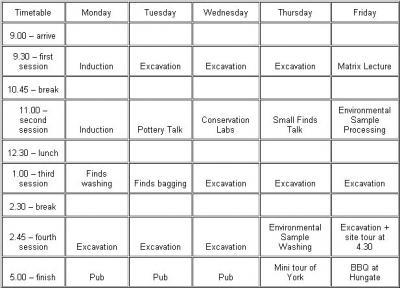 Figure 1 - Typical trainee timetable. (Image Copyright - Sarah Drewell)