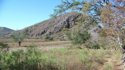Figure 1: Photograph of Cerro Quiotepec and the Río Atentli Valley (Image Copyright: Arnaud F. Lambert)