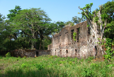 Figure 7: Ruins of The Great House of Bunce Slave Fort (Image Copyright: Andrew Marriott)