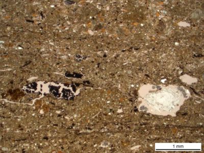 Figure 2: A layer of dust in a sequence of plaster floors at Kamiltepe (Image Copyright: Lisa-Marie Shillito)