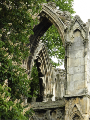 Number 1:  View of St Mary's ruins in Museum Gardens, York. Photographer: Kerrie Hoffman, University of York (84 points)